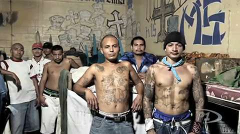 Officer safety with MS13 gangs