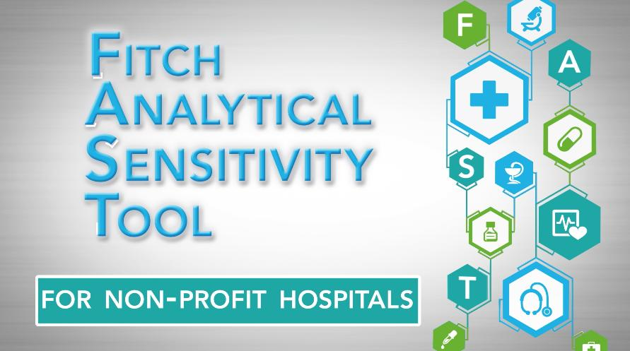 Image result for fitch Analytical Sensitivity Tool