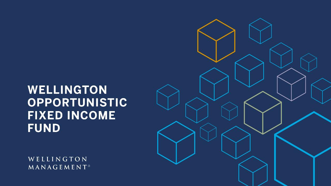 Opportunistic Fixed Income | Wellington Management