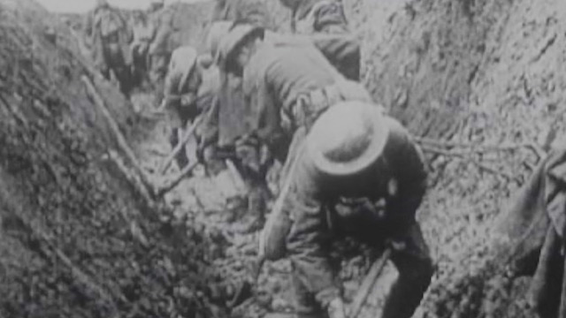 The Somme 100 Years On Search The Roll Call Of The Irish Dead