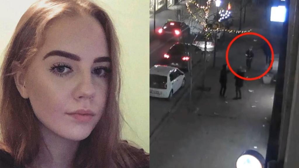Iceland murder case: the final movements of Birna Brjansdottir